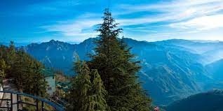 fall in love with each other all over again. at Amshorba valley -Romantic trip to shimla manali by Roaming routes
