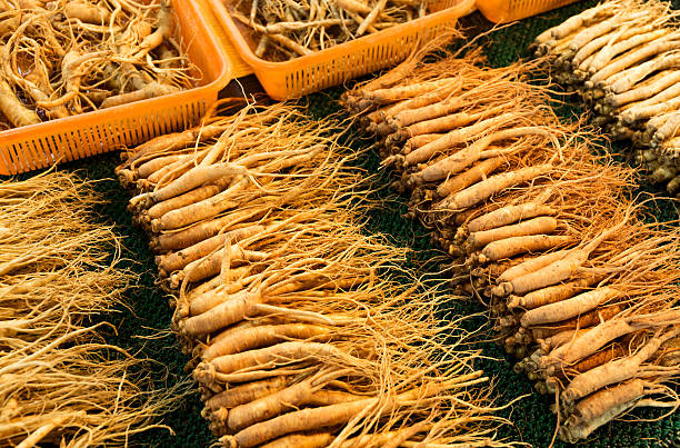 Ginseng herb benefits in Ed problem. Buy best herbal medicine Korean Red Ginseng for ED -Ohman.in