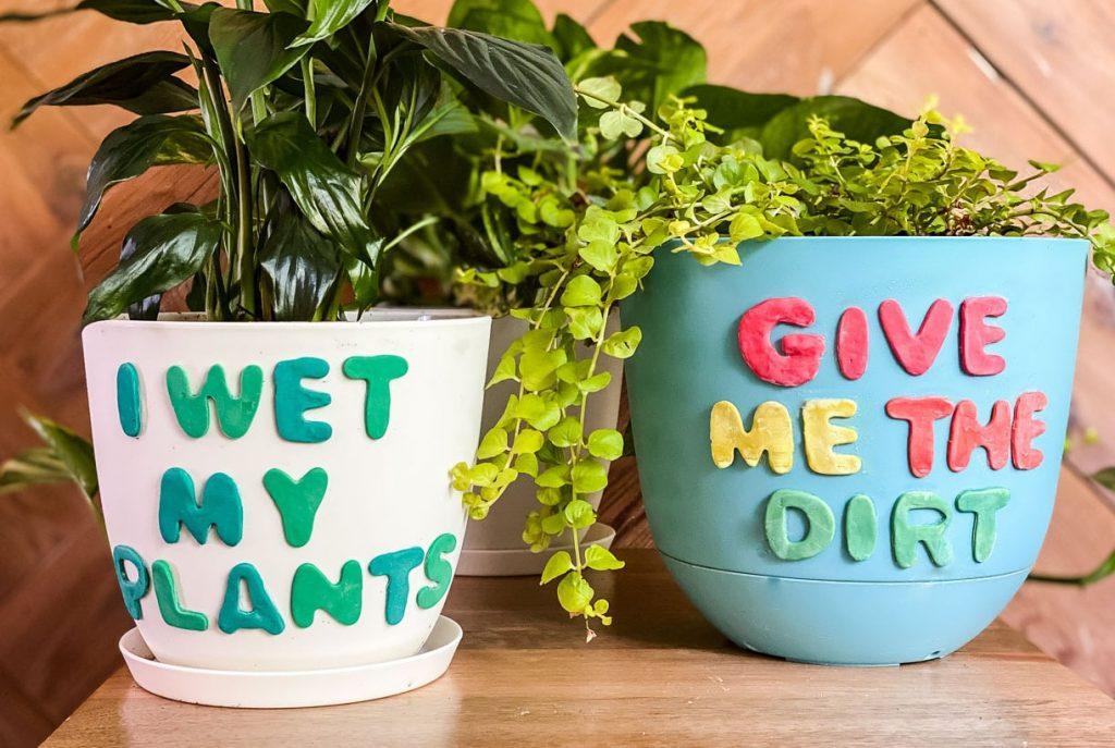 Decorate flower pots for garden decoration