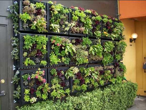 Accent garden wall for garden decoration