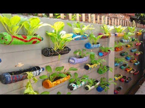 Reuse of plastic bottle for garden decoration